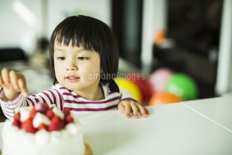 ケーキを触ろうとする女の子の写真素材 [FYI01622521]