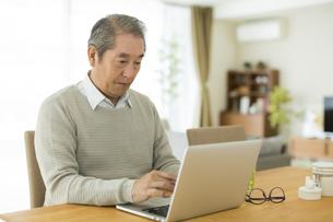 パソコンをするシニア男性の写真素材 [FYI01622757]