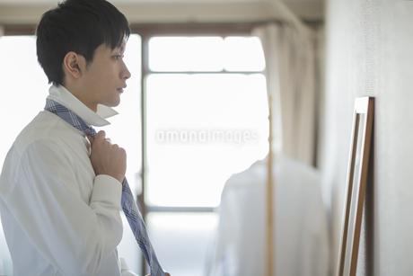 自宅でネクタイを結ぶフレッシュマンの写真素材 [FYI01622804]