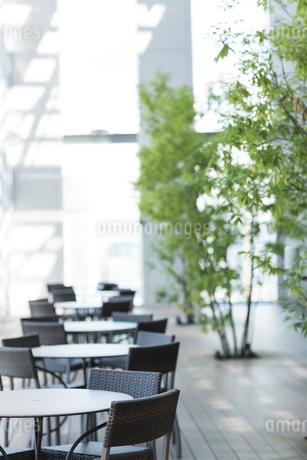カフェのテラス席の写真素材 [FYI01622941]