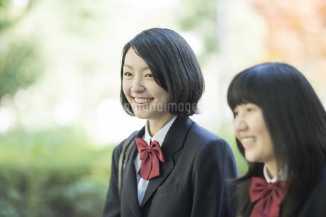 笑顔で通学をする女子高校生の写真素材 [FYI01623075]