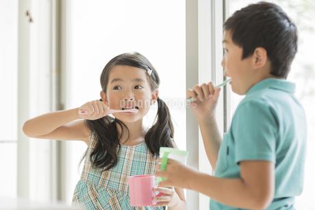 歯磨きをする兄と妹の写真素材 [FYI01623186]