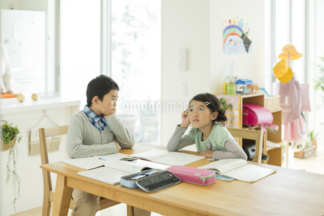 テーブルで勉強をする兄と妹の写真素材 [FYI01623200]