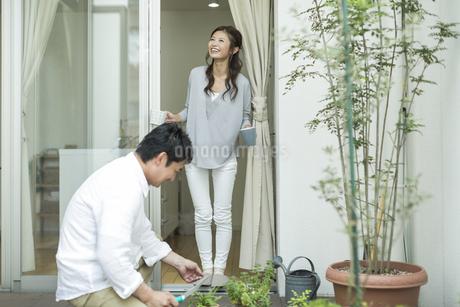 テラスでガーデニングを楽しむ夫婦の写真素材 [FYI01623265]