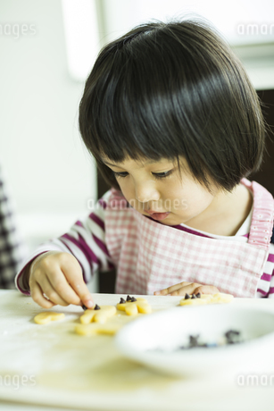 クッキー作りをする女の子の写真素材 [FYI01623271]
