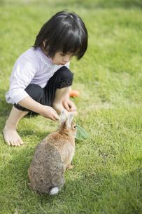 ウサギに野菜を与える女の子の写真素材 [FYI01623374]