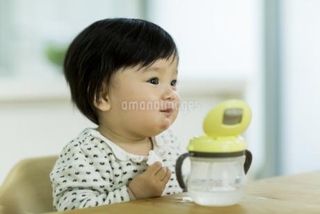 お菓子を食べる赤ちゃんの写真素材 [FYI01623445]