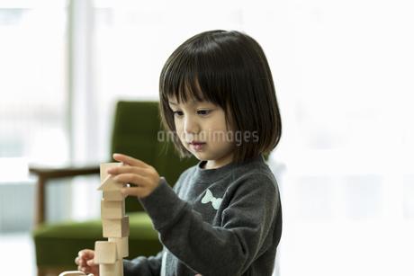 積み木で遊ぶ女の子の写真素材 [FYI01623506]