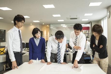 打ち合わせをするビジネスマンとビジネスウーマンの写真素材 [FYI01623534]