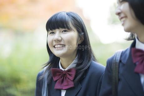 笑顔で通学をする女子高校生の写真素材 [FYI01623589]