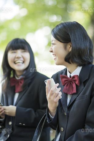 携帯電話を持って会話をする女子高校生の写真素材 [FYI01623591]