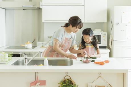 キッチンで野菜を切る親子の写真素材 [FYI01623759]