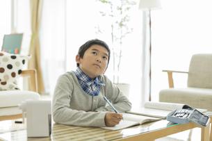 勉強をする男の子の写真素材 [FYI01623810]