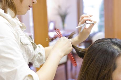 髪をカットする日本人美容師の写真素材 [FYI01623944]