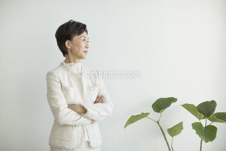 腕組みをするシニア女性の写真素材 [FYI01624028]