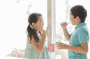 歯磨きをする兄と妹の写真素材 [FYI01624051]