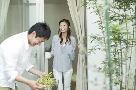 テラスでガーデニングを楽しむ夫婦の写真素材 [FYI01624055]