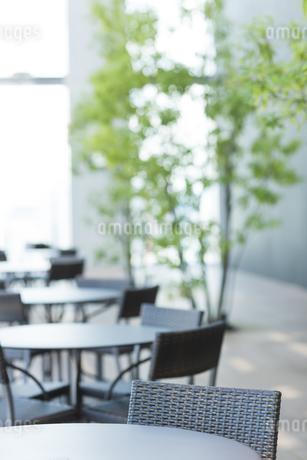 カフェのテラス席の写真素材 [FYI01624061]