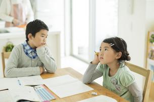テーブルで勉強をする兄と妹の写真素材 [FYI01624125]