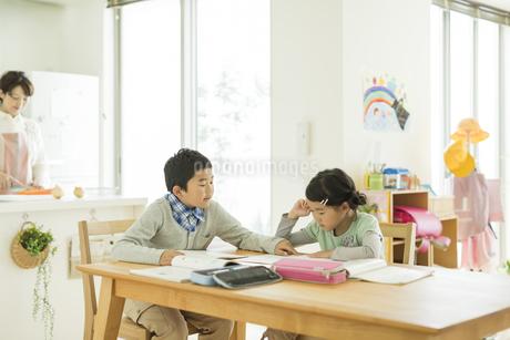テーブルで勉強をする兄と妹の写真素材 [FYI01624213]