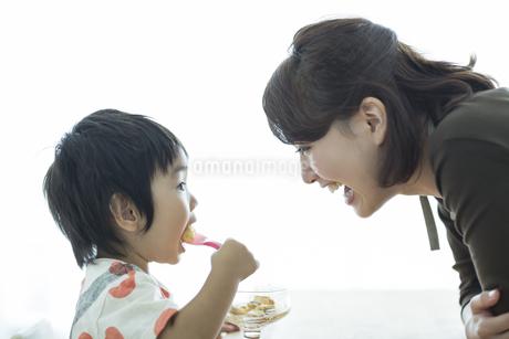 プリンを食べる男の子と見守る母親の写真素材 [FYI01624269]