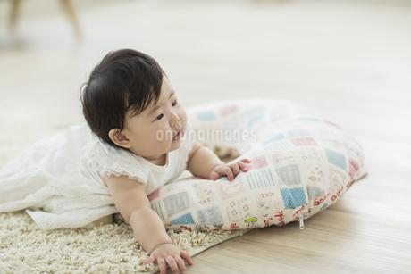 ハイハイをする赤ちゃんの写真素材 [FYI01624307]