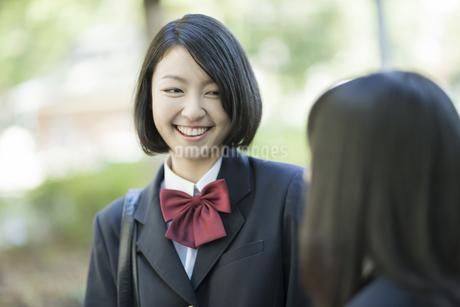 笑顔で会話をする女子高校生の写真素材 [FYI01624347]