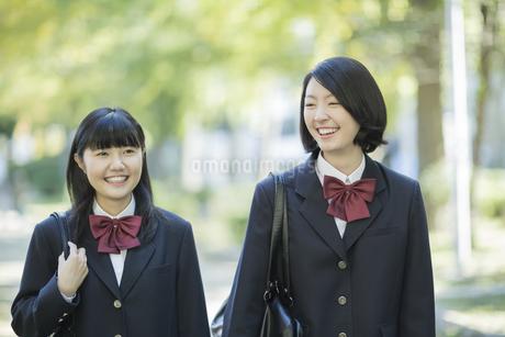 笑顔で通学をする女子高校生の写真素材 [FYI01624390]