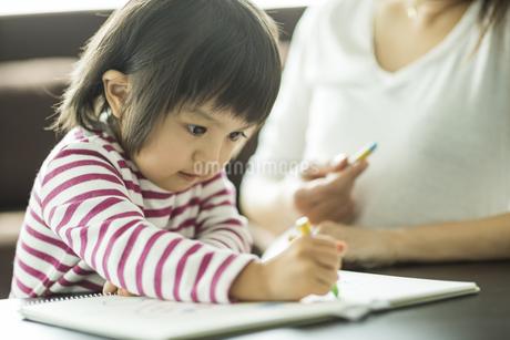 お絵描きをする親子の写真素材 [FYI01624411]