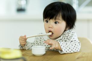 食事をする赤ちゃんの写真素材 [FYI01624542]