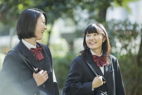 笑顔で通学をする女子高校生の写真素材 [FYI01624625]