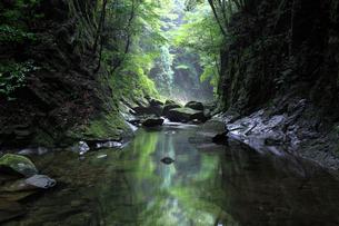 那智原始林の清流の写真素材 [FYI01624736]