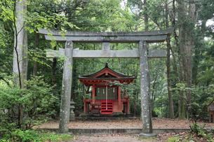 熊野古道の発心門王子の写真素材 [FYI01624973]