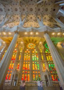 サグラダ・ファミリア聖堂内部のステンドグラスの写真素材 [FYI01625239]