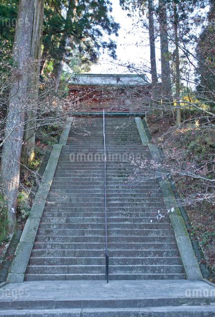比叡山延暦寺西塔の石段とにない堂の写真素材 [FYI01625497]