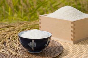 升に入ったお米と稲穂とお茶碗の写真素材 [FYI01625531]