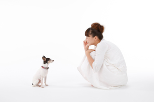 白いワンピースの女性と犬の写真素材 [FYI01625850]