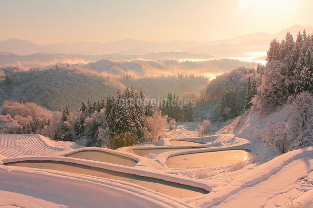 雪の棚田の写真素材 [FYI01625861]