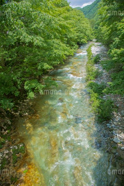 上三依水生植物園沿いを流れる男鹿川の写真素材 [FYI01625925]