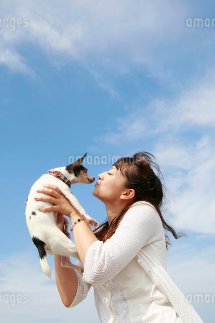 犬を抱き上げる白いワンピースの女性の写真素材 [FYI01625983]