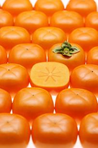おけさ柿の写真素材 [FYI01626013]