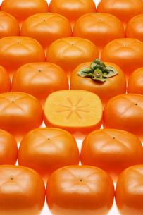 おけさ柿の写真素材 [FYI01626087]