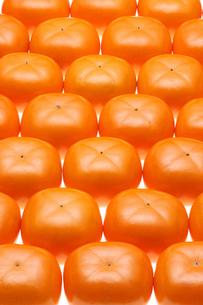 おけさ柿の写真素材 [FYI01626156]