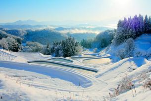 雪の棚田の写真素材 [FYI01626489]