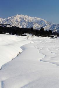 雪の守門岳の写真素材 [FYI01626526]