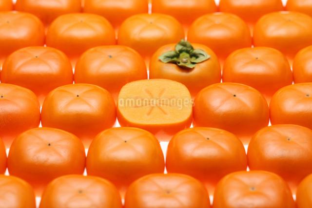 おけさ柿の写真素材 [FYI01626751]