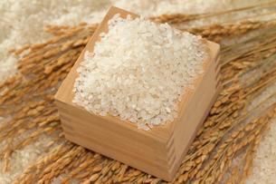 米と升と稲穂の写真素材 [FYI01626853]