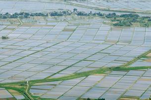 田植え後の田園風景の写真素材 [FYI01626878]