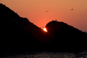 夕日の写真素材 [FYI01626963]