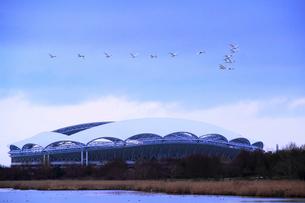 冬の東北電力ビッグスワンスタジアムの写真素材 [FYI01626996]